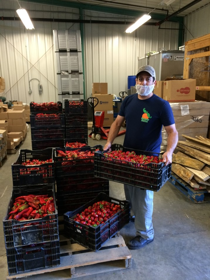 Dan and peppers